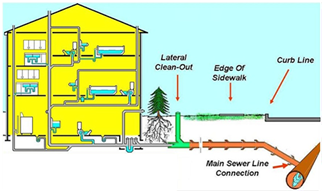 Main Sewer Line